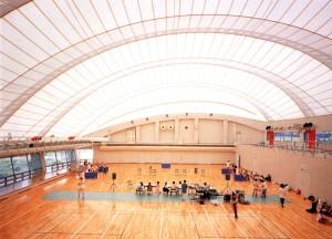 Ichinoseki Dome